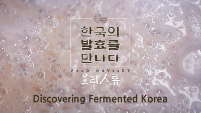 Food Odyssey - Discovering Fermented Korea